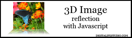 3D image reflection with javascript